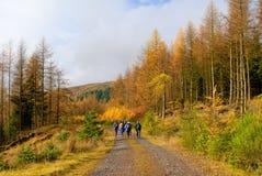 El caminar en montañas escocesas Foto de archivo