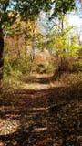 El caminar en naturaleza Fotos de archivo