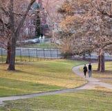 El caminar en el parque Imágenes de archivo libres de regalías