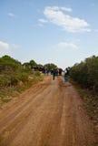 El caminar en un camino rural Fotografía de archivo libre de regalías