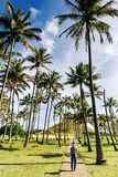 El caminar feliz del gitl del inconformista bitween las palmeras en la playa de Anakena, isla de pascua fotografía de archivo libre de regalías