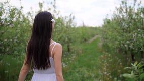 El caminar femenino moreno entre ?rboles de florecimiento almacen de metraje de vídeo