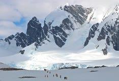 El caminar, la Antártida Imagenes de archivo
