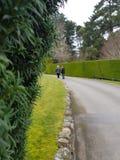 El caminar a lo largo de la calzada Fotografía de archivo