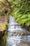 El caminar a lo largo del abastecimiento de la agua histórico de Madeira systemHiking a lo largo del sistema de abastecimiento hi Imagen de archivo