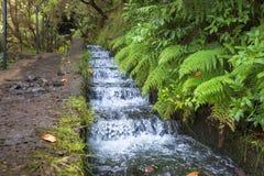 El caminar a lo largo del abastecimiento de la agua histórico de Madeira systemHiking a lo largo del sistema de abastecimiento hi Imágenes de archivo libres de regalías