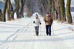 El caminar nórdico imagen de archivo