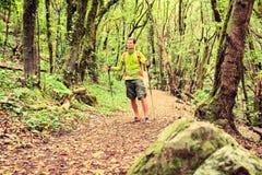El caminar que camina del caminante en bosque verde fotografía de archivo