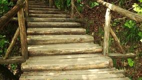 El caminar a través de bosque de la montaña cerca al lago Visión desde los lagos Plitvice almacen de metraje de vídeo