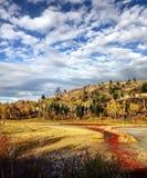 El caminar a través de la tundra hermosa imagen de archivo libre de regalías