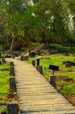 El caminar a través del jardín en aguas termales del colmillo fotografía de archivo