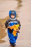 El caminar a través del parque del otoño (01) Imagen de archivo libre de regalías