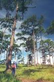 El caminar turístico joven y backpacker de la mujer en el conce de Forest Travel Imagen de archivo libre de regalías
