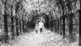 El caminar video blanco y negro a lo largo del callejón debajo de la bóveda de las hojas de la madre y de la hija almacen de metraje de vídeo