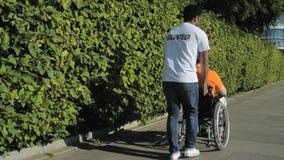 El caminar voluntario del castor impaciente con un hombre wheelchaired metrajes