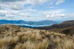 El camino abajo del parque nacional de Tongariro Foto de archivo
