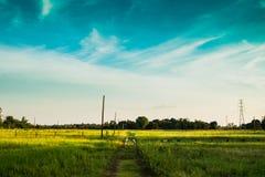 El camino al campo Foto de archivo libre de regalías
