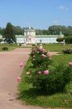 El camino al palacio alineó con la peonía floreciente Fotos de archivo libres de regalías