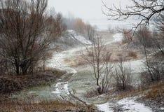 El camino al salir del bosque en un día de invierno La primera nieve foto de archivo