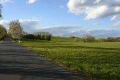 El camino alineó por los árboles y los prados, República Checa, Europa Imagen de archivo