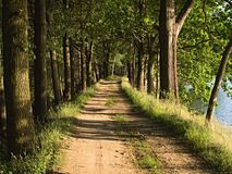 El camino alrededor de la charca Foto de archivo libre de regalías