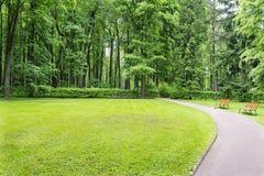 El camino cerca del césped y del bosque Imagenes de archivo