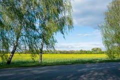 El camino cerca del campo de la rabina Imagenes de archivo