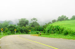 El camino curva cuesta abajo con el parque de naturaleza verde Imagen de archivo libre de regalías