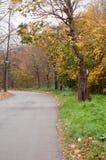 El camino curva a la izquierda al lado de bosque Fotografía de archivo