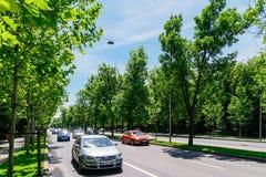 El camino de Kiseleff es un bulevar importante en Bucarest que corra como continuación que da al norte de Victory Street Fotos de archivo libres de regalías