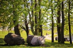 El camino de la calzada con las ramas y las piedras grandes curvan en parque público con la llamarada ligera Foto de archivo libre de regalías
