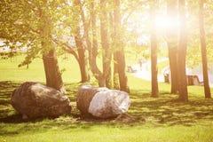 El camino de la calzada con las ramas y las piedras grandes curvan en parque público con la llamarada ligera Imagen de archivo libre de regalías