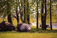 El camino de la calzada con las ramas y las piedras grandes curvan en parque público con la llamarada ligera Imagenes de archivo