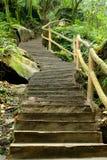 El camino de la piedra del jardín Imagen de archivo
