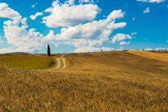 El camino de las colinas Imagen de archivo libre de regalías