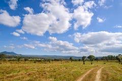 El camino de tierra debajo del cielo azul y la nube en la nación de Thung Salaeng Luang parquean, Tailandia Fotografía de archivo