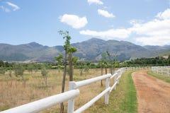 El camino de tierra a través de una granja con blanco escogió el cercado Imagen de archivo