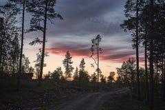 El camino de tierra y los contornos de árboles en la puesta del sol Fotografía de archivo