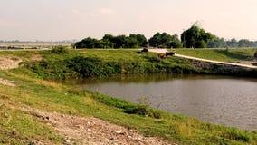 El camino del dique en el medio del verano fotos de archivo libres de regalías