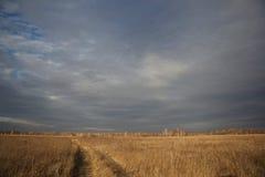 El camino en el campo siberiano Fotografía de archivo