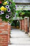 El camino en el jardín con las flores Foto de archivo libre de regalías