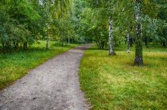 El camino en el parque Fotografía de archivo libre de regalías