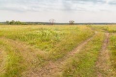 El camino en el prado Imagen de archivo libre de regalías