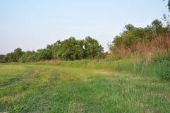 El camino en el prado segado fotografía de archivo