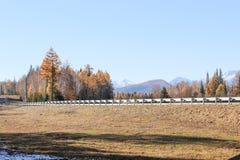 El camino en el valle del otoño Imagenes de archivo