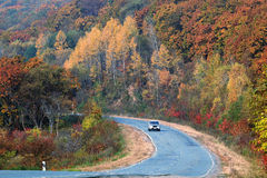 El camino en las montañas del otoño Imagenes de archivo
