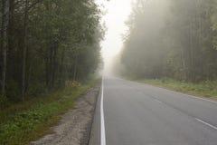 El camino en niebla por la mañana temprana del otoño fotografía de archivo
