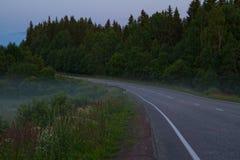 El camino en noche de niebla Foto de archivo