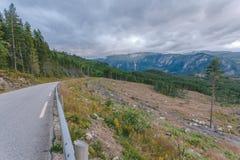 El camino en Noruega Imágenes de archivo libres de regalías