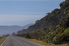 El camino en Nueva Zelanda Imagen de archivo libre de regalías